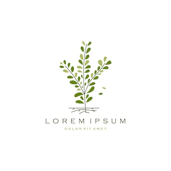 Lage boom tak blad logo pictogram vectorillustratie