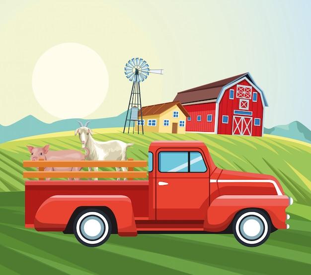 Landbouw schuur huis windmolen pickup geit en varken veld