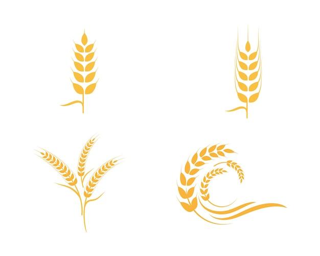 Landbouw tarwe logo sjabloon
