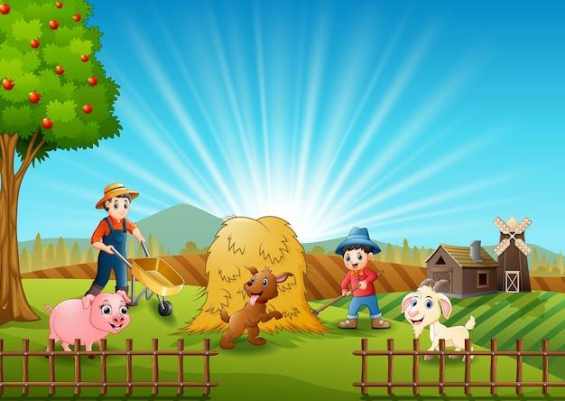 Landbouwactiviteiten op boerderijen met dieren