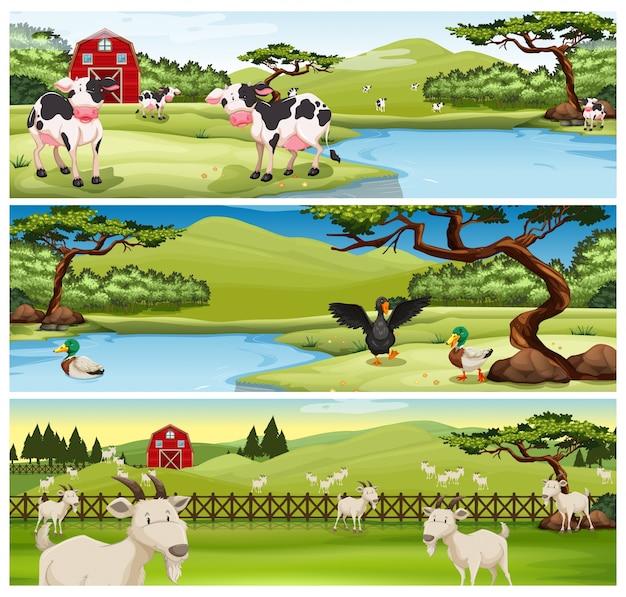 Landbouwhuisdieren op de boerderij