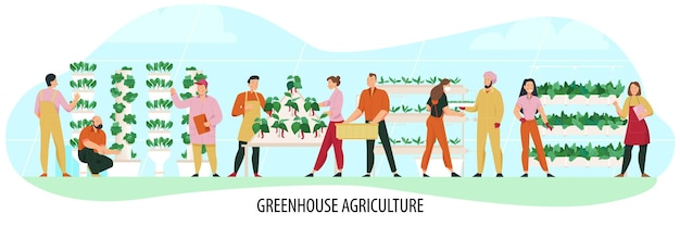 Landbouwsamenstelling met mensen die kasplanten plat kweken