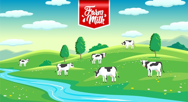 Landelijk landschap met koeien in de weide, boerderij melk