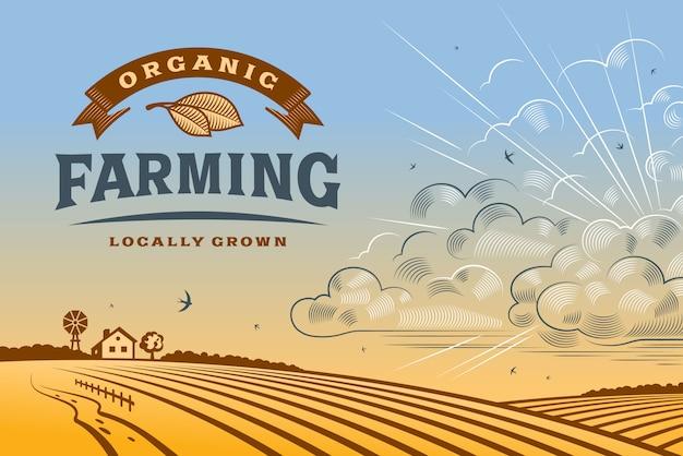 Landschap met biologische landbouw