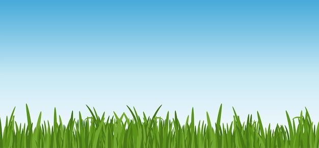 Landschap met dreen gras tegen de blauwe hemelachtergrond. grasbladeren en gazon op de voorgrond.