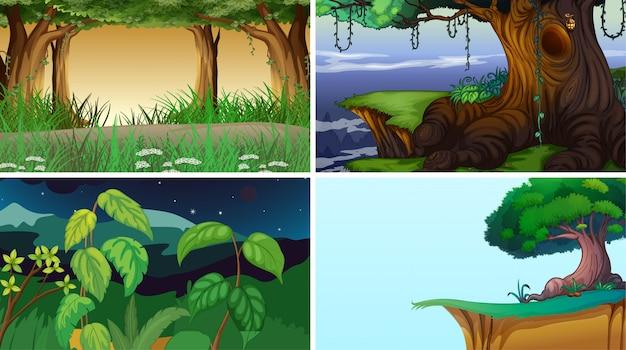 Landschap natuurtaferelen