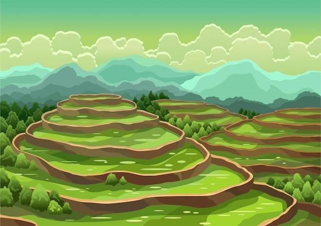 Landschap van padieveldterrassen. aziatische landelijke achtergrond. landbouw oogsten granen of thee