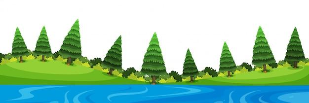 Landschap van pijnbomen en rivier