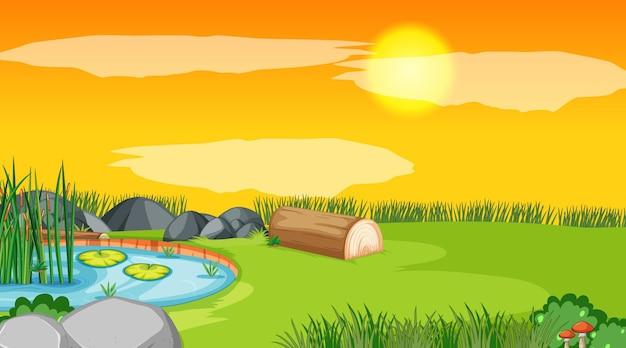 Landschapsscène van bos met vijver en de zon die ondergaat