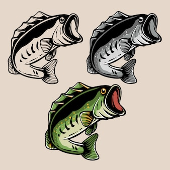 Largemouth bas vis illustratie