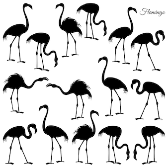 Lasersnijdende flamingo instellen.