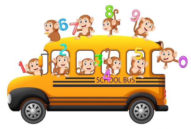 Laten we tellen met aap op de schoolbus