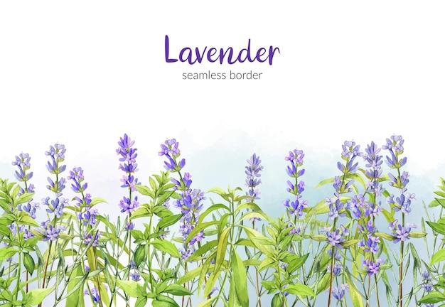 Lavendel en groen ijzerkruidillustratieontwerp