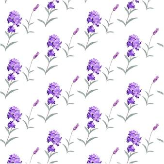 Lavendel patroon achtergrond