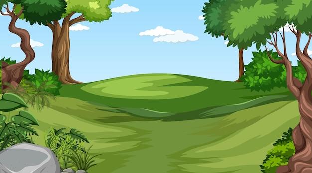 Leeg bos overdag met verschillende bosbomen Premium Vector