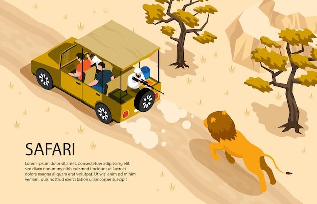 Leeuw die na safariauto en mens met kanon 3d isometrische horizontale illustratie loopt,