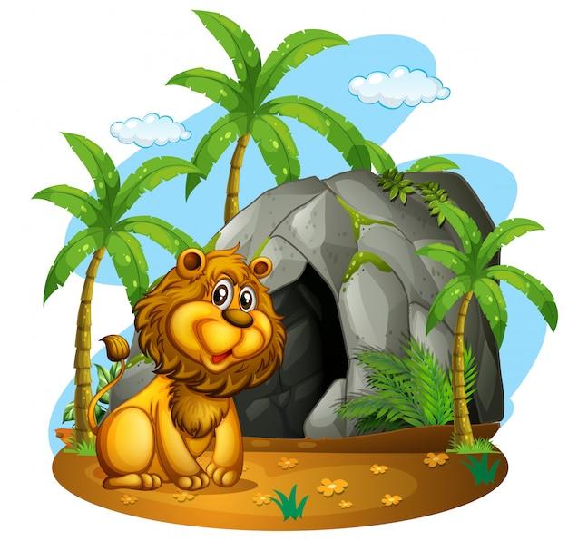 Leeuw zit voor grot
