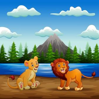 Leeuwenbeeldverhaal het spelen in de rivieroever