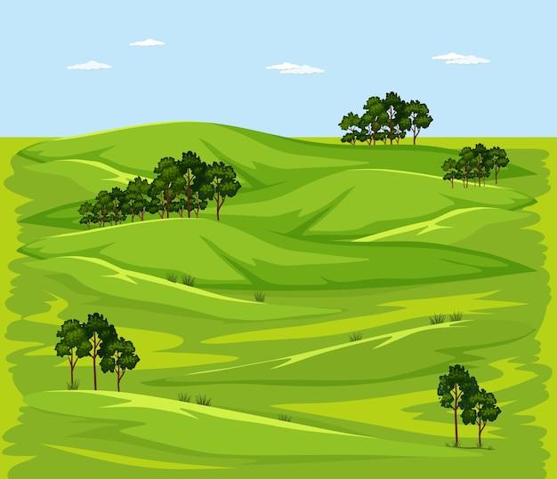 Lege groene weide natuur landschapsscène