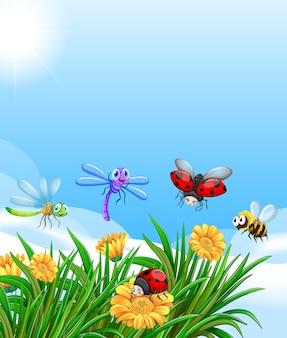 Lege natuur achtergrond met veel verschillende insecten