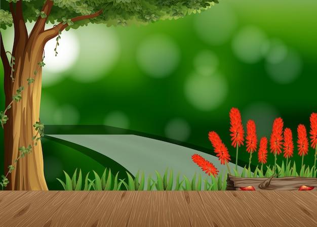 Lege natuurlandschapsscène met onscherpe achtergrond
