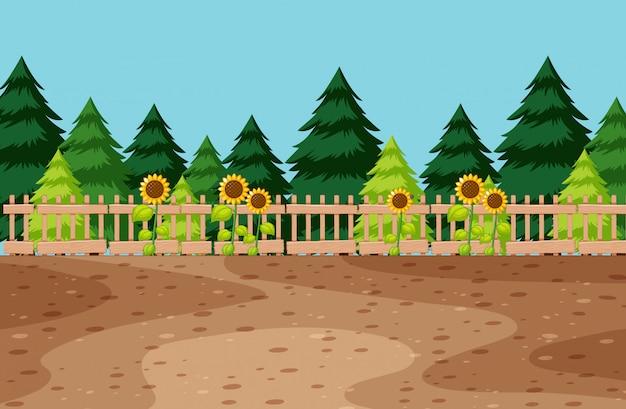 Lege ruimte in de tuin met zonnebloem en den op achtergrond