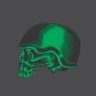 Leger schedel