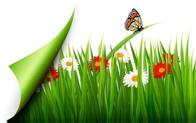 Lente achtergrond met bloemen, gras en een vlinder.
