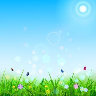 Lente achtergrond met lucht, zon, gras, bloemen en vlinders