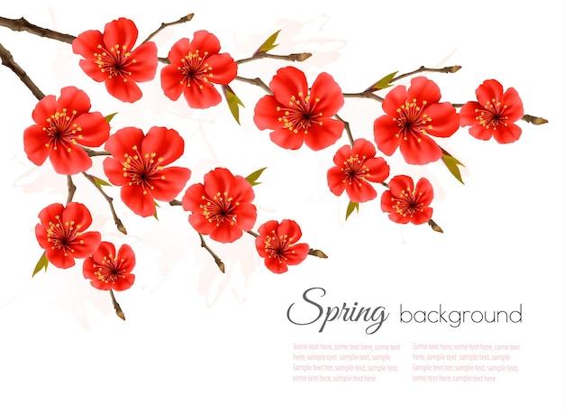 Lente achtergrond met rode bloemen