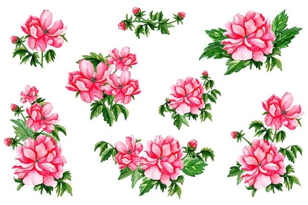 Lente aquarel rode bloemen ingesteld op een witte achtergrond.