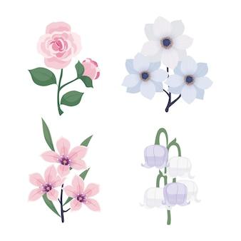 Lente bloemencollectie