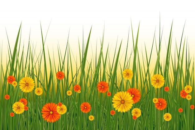 Lente of zomer achtergrond, zonnige dag met bloemen en gras, illustratie. pasen-decoratieelement met de lentegras en weidebloemen