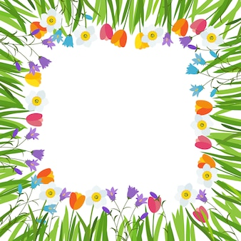Lente tulip, bluebell, narcissus bloemen achtergrond