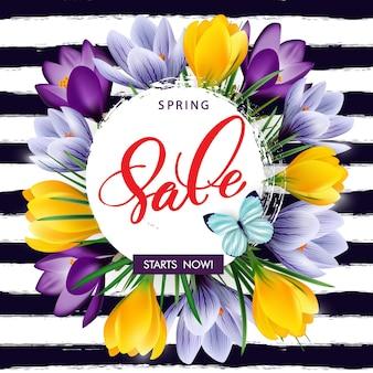 Lente verkoop concept. lente achtergrond met bloeiende krokussen. sjabloon vector.