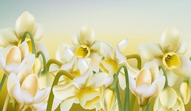 Lente weide van narcis bloemen in aquarel stijl