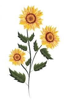 Lente zonnebloem drawinf met bladeren