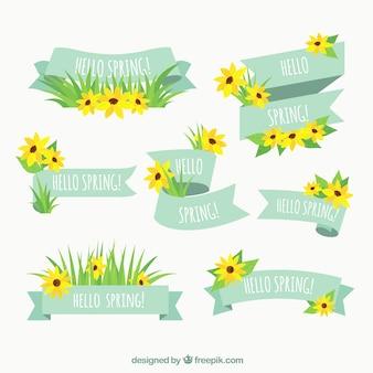 Lentelinzameling van de lente met gele bloemen