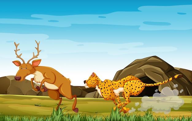 Leopard jacht herten in stripfiguur op de achtergrond van het bos Premium Vector