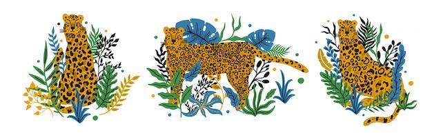 Leopard set dierlijk enkel object. tropische plant verlaat achtergrond. vectorillustratie.