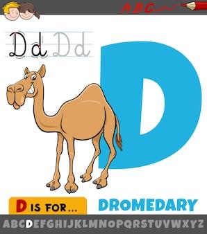 Letter d uit alfabet met cartoon dromedaris dier