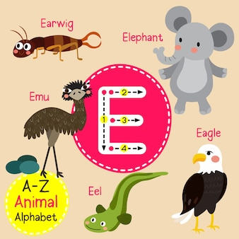 Letter e dierentuin alfabet