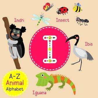 Letter i dierentuin alfabet