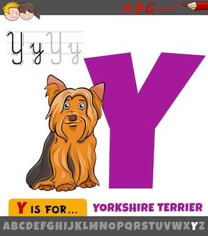 Letter y uit alfabet met cartoon yorkshire terrier