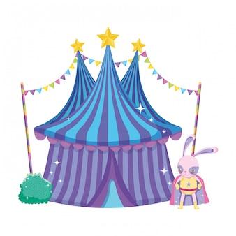 Leuk circuskonijn met laag en tent