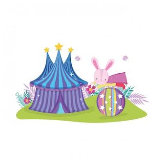 Leuk circuskonijn met laag in ballon