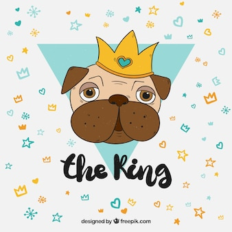 Leuk concept met de koning van pugs