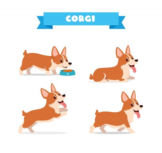 Leuk corgi hondendier met veel posebundelset