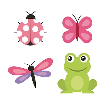 Leuk de vlinder lieveheersbeestje van de kikkervlinder