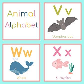 Leuk dierlijk alfabet. v, w, x-letter. vampier, walvis, x-ray vis.
